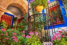 Mis favoritas......para el jardin / by Sandy Barahona