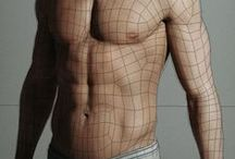 Wireframe and Topology