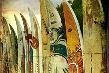 surfeatsleep