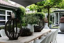Garden - Patio / Outdoor Living Ideas