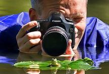 Photography / Fotógrafos que harán de todo para obtener la toma perfecta