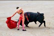 Bullfighting / Toreo / The Plaza de Toros de Las Ventas is a famous bullring in Madrid, Spain.