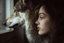 ❤  Wolves  ❤