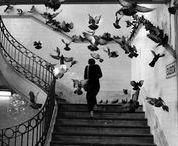 Cartier-Bressonmania / Henri Cartier-Bresson Photographe