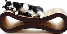 Spoil Your Cat / Interesting and different cat products