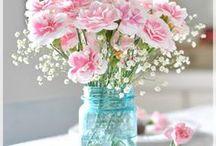 Flores - flowers - gardens