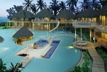 Best Luxury Hotel Pools / by Five Star Alliance