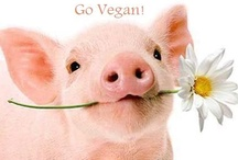 Vegan Livin' / Because you should live and let live.