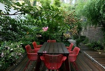 Outdoor space inspiration / by Aaron Novello - The Novello Group