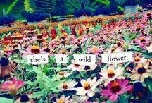 Feeling Wild / by Jillian Drury
