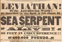 19th Century Typography