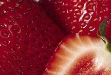 Holistic Food & Wellness