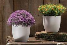Decoración de interiores / Decora cada espacio de tu hogar con detalles exclusivos.