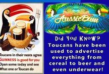 Did you Know? / Bird facts