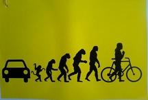 Evolution!?