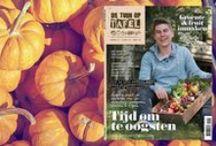 De Tuin op Tafel / Alles over groenten, kruiden en fruit kweken, leuke moestuin ideeën, tips en verse recepten.