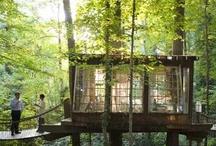 Casas ecológicas / Cob, cal, paja, madera, arena. vidrio, yurtas, domos, tipis, cabañas, sistemas de construcción ecológicas.
