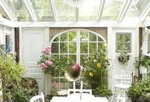 Greenhouse / växthus