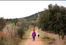 Los niños aman la Naturaleza / Adoro ver a los niños y niñas conectados con la naturaleza, amando a los animales, los árboles y disfrutando de las flores. Espíritus libres que se asombran con la observación libre de su entorno.