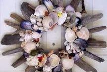 ΚΟΓΧΥΛΙΑ (Shells) / ΘΗΣΑΥΡΟΙ ΤΗΣ ΘΑΛΑΣΣΑΣ