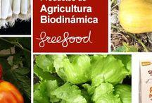 Agricultura Biodinámica / Amamos la tierra y aprendemos cada día como mejorar nuestro entorno con la agricultura biodinámica, la permacultura y creando bosques silvestres comestibles.