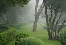 Garden dream / La vita inizia quando si comincia un giardino