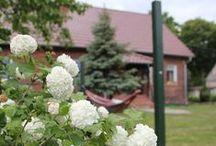 MY GARDEN/ Nasz ogród / garden, patio, garden diy, brick house, hammock, outdoor living/ ogród, patio, dom z cegły, hamak w ogrodzie, żwirowy wjazd, chodnik z cegły