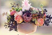 Other Wedding Flowers