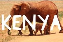 Travel to Kenya / Things to do in Kenya and useful travel tips to plan your trip to Kenya