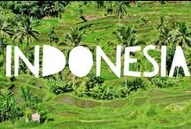 Travel to Indonesia / Things to do in Indonesia and useful travel tips to plan your trip to Indonesia