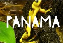 Travel to Panama / Things to do in Panama and useful travel tips to plan your trip to Panama