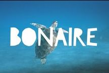 Travel to Bonaire / Things to do in Bonaire and useful travel tips to plan your trip to Bonaire