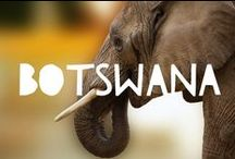 Travel to Botswana / Things to do in Botswana and useful travel tips to plan your trip to Botswana