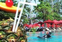 Amazing Holiday Pool /  5 star hotel VS 5 star dive resort