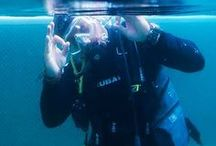 We are DIVERS / Fall in Love to the sea, likes marine life, enjoy to outdoor activity