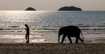 Welcome to Koh Chang / Koh Chang, national park, the largest island on Gulf of Thailand