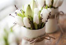 Season | Spring