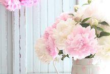 Tendres fleurs