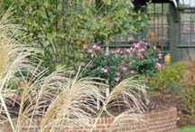 Our Portfolio-Residential / Residential Landscaping Installed by Grounds Control