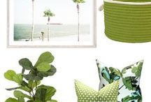 Pantone Colour of the Year 2017 / Greenery inspo in Pantones most popular colour.