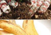 Garden Hacks / Whether you have a green thumb or no thumb, anyone can do these clever garden hacks.