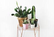 I ♥ Gardens / Decorative garden, landscaping, garden. home decor.