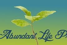 Abundant Life Project / by Deanna Lohnes