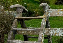 Fences..Gates / by Eileen Gray
