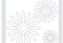 paper daisies 2 die / by Susan Harwell Hendrick