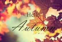 Season:Autumn!  / by Kelsey Neal