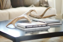 Antlers, Horns, and Skulls - So Chic!