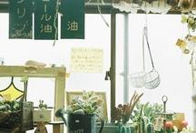 Plants/Gardening