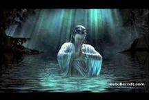 Meditation Videos / by Christa Lubbe