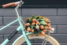 La bicyclette bleue / by Brioche